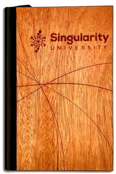 Singularity-Journal_grande.jpg